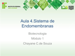 Aula 4. Endomembranas - Docente