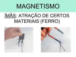 eletromagnetismo FLAMINGO