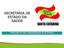 Projeto Estadual 2011 - Secretaria Estadual de Saúde