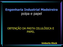 Engenharia Industrial Madeireira AT419 – Polpa e Papel