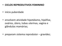 2a aula Ciclo reprodutivo feminino