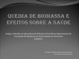 ARTIGO Queima de Biomassa e efeitos sobre a saúde