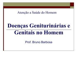 sistema genital masculino - Universidade Castelo Branco