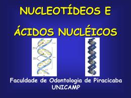 T04 - Ácido Nucleico - FOP