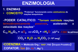 T07 - Enzimologia