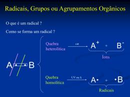 nomenclatura2