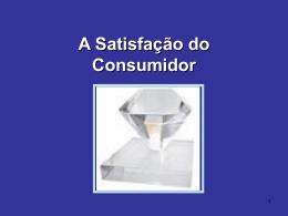 A Satisfação do Consumidor