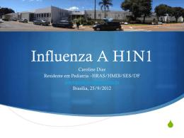 Influenza H1N1 - Paulo Roberto Margotto