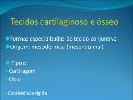 Matriz óssea - Universidade Castelo Branco