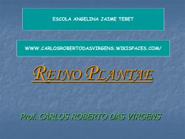 reino_plantae 2