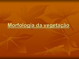 Morfologia da vegetação