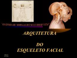 ARQUITETURA DO ESQUELETO FACIAL
