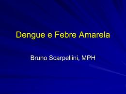 Dengue IgM