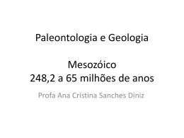 Mesozóico – Era dos Répteis 248,2 a 65 milhões de anos