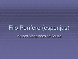 160557190514_Porifero