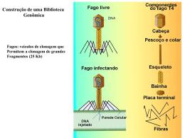 Metodologias em Biologia Molecular 2