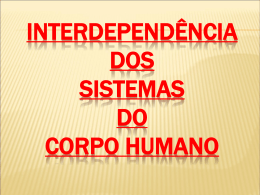 Interdependência dos sistemas