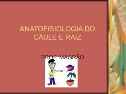 ANATOFISIOLOGIA DO CAULE E RAIZ