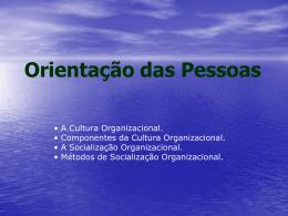 Aula 10 - Cultura Organizacional e Socialização - Vídeo