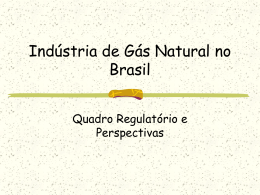 Indústria de Gás Natural no Brasil