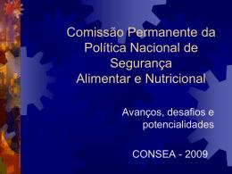 Comissão Permanente da Política Nacional de Segurança