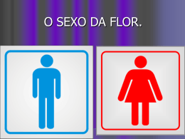 O sexo da flor.