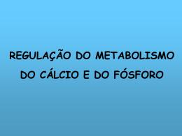 BALANÇO DE CÁLCIO