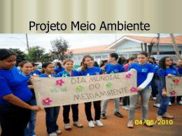 Projeto Meio Ambiente - CristianeFernandesGeografia