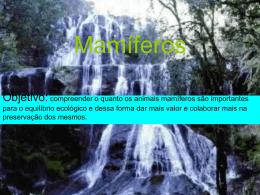 Mamíferos - nte chapeco