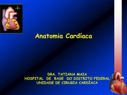 Anatomia cardíaca Sistema cardionector Circulação