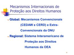 Instrumentos de Proteção aos Direitos Humanos
