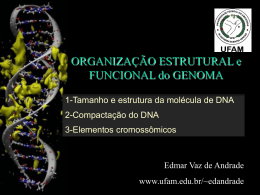 Organização do Genoma I