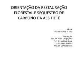 orientação da restauração florestal e sequestro de carbono da aes
