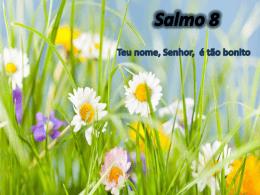 Salmo 08