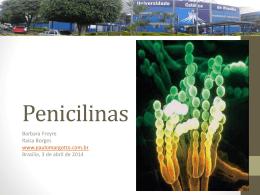 Penicilinas - Paulo Roberto Margotto