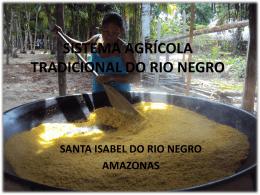 Sistema agrícola tradicional do rio negro