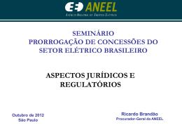 Painel I - Apresentação realizada por Ricardo Brandão