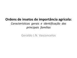 Ordens de insetos de importância agrícola: Características gerais e