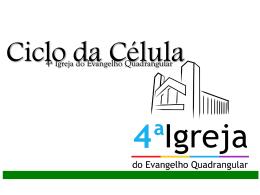 Ciclo da Célula