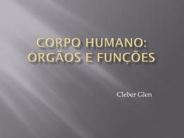 Corpo humano: órgãos e funções