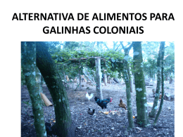 ALTERNATIVA DE ALIMENTOS PARA GALINHAS COLONIAIS