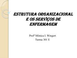 Aula 03 Estrutura organizacional e os serviços de enfermagem