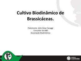 Cultivo Biodinâmico de Brassicáceas – Julio Soraggi