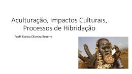 Aculturação, Impactos Culturais, Processos de Hibridação