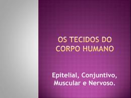 2o ANO - HISTOLOGIA - Escola Monteiro Lobato