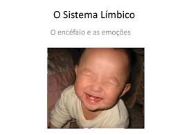 O Sistema Límbico