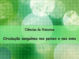 Ciências da Natureza Circulação sanguínea