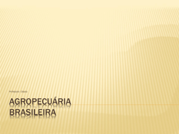 6_agropecuariabrasileira