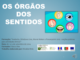 Sentidos - Nivalda Dinis