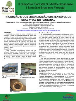 Slide 1 - Universidade Estadual de Mato Grosso do Sul